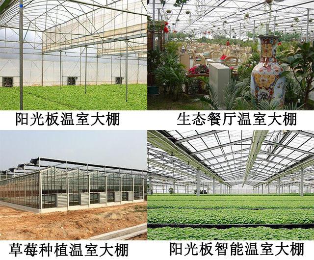 溫室大棚陽光板案例圖